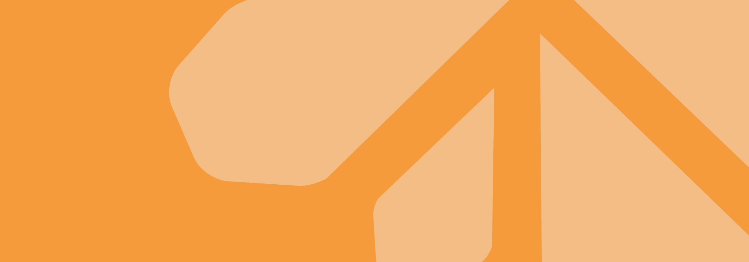 OrangeBack.jpg